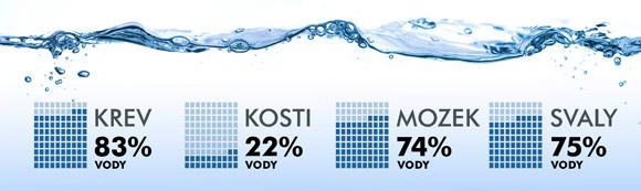 Obsah vody v těle